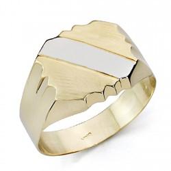 Sello oro bicolor 18k caballero banda hueco [7502]