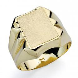 Sello oro 18k caballerotallado hueco [7501]