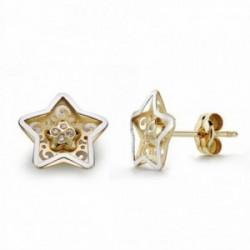 Pendientes oro 18k bicolor 9mm. estrella circonitas [AA2136]