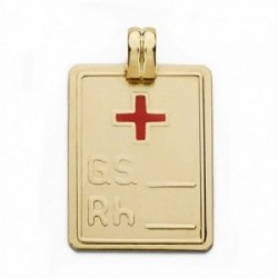 Colgante oro 18k placa grupo sanguíneo RH cruz roja 28mm. [AA2523GR]