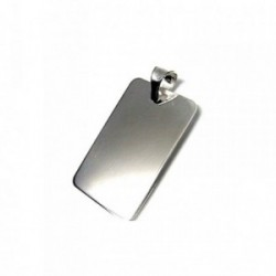 Colgante plata ley 925m 32mm. chapa lisa [AA7965]