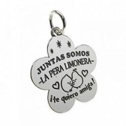 Colgante plata Ley 925m chapa flor mensaje motivos limones [AB5438]