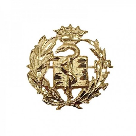 Insignia profesional Medicina oro 18k escudo pin alfiler 17.7mm.