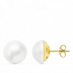 Pendientes oro 18k perla japonesa 11 mm. lisa presión